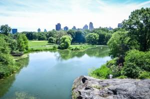 central-park-new-york