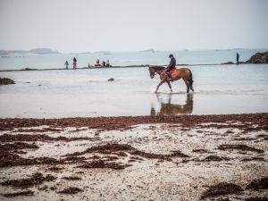 Bretagne balade à cheval