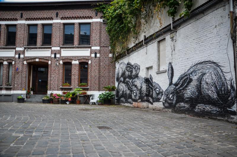 street art lapins gand