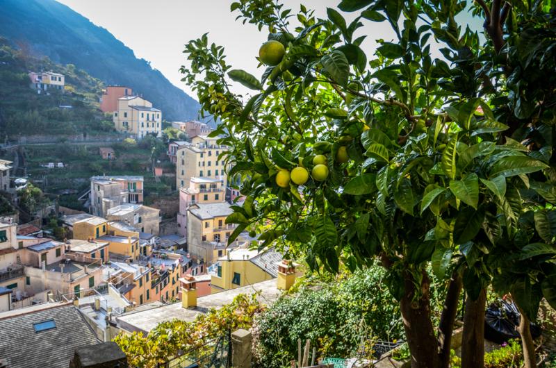 riomaggiore Cinque Terre Italie vue hauteur