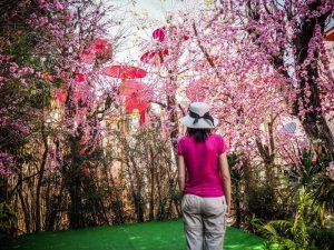 fleurs-temple-thailande