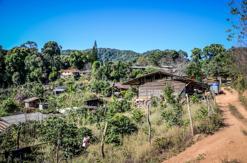 village-hmong-thailande