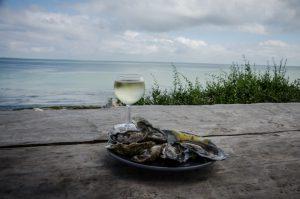 île de ré dégustation d'huîtres