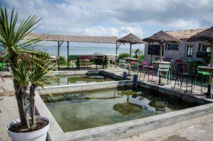parc ostreicole île de ré