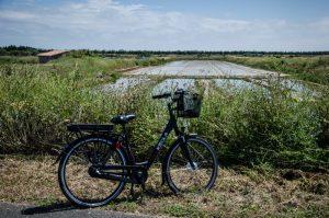 vélo île de ré