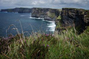 falaises-moher-sejour-irlande