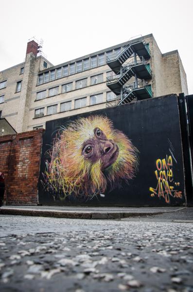 irlande-du-nord-street-art