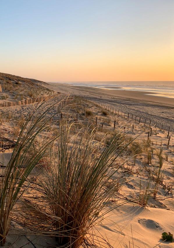 le-porge-ocean-sunset