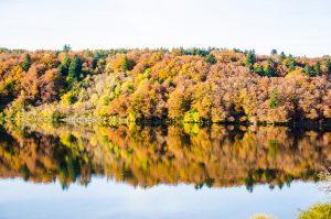 automne lac de guery