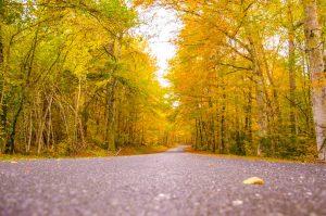 route auvergne