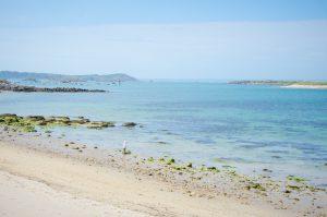 plage-ile-grande-cote-granit-rose