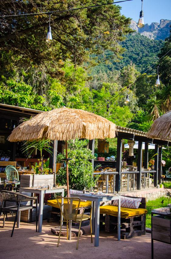 restaurant-chez-gina-porto