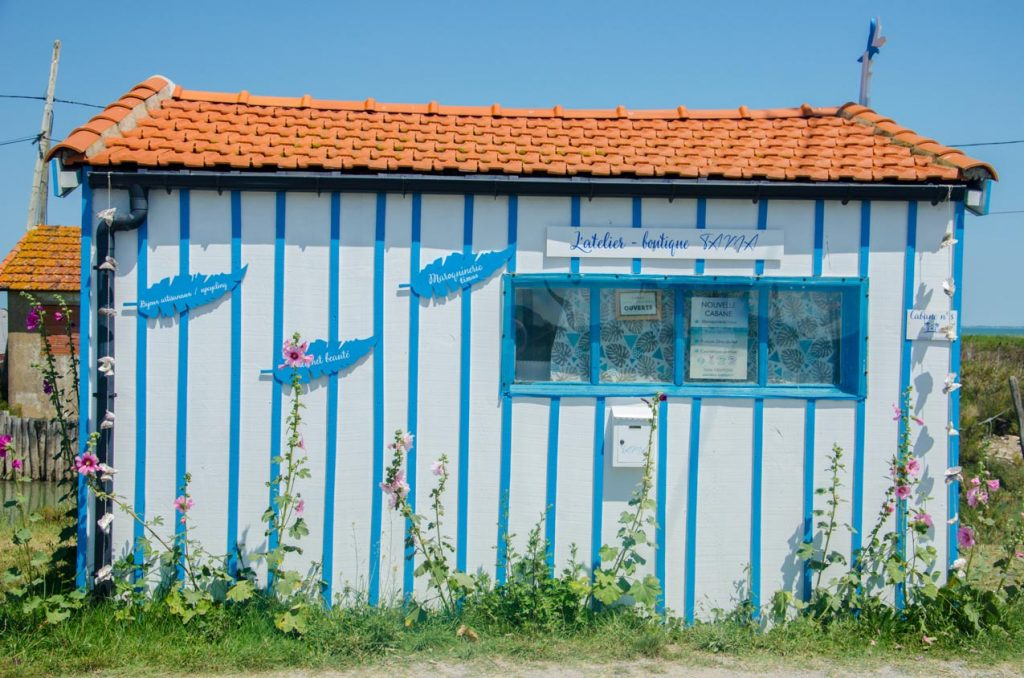 cabane-la-baudissiere