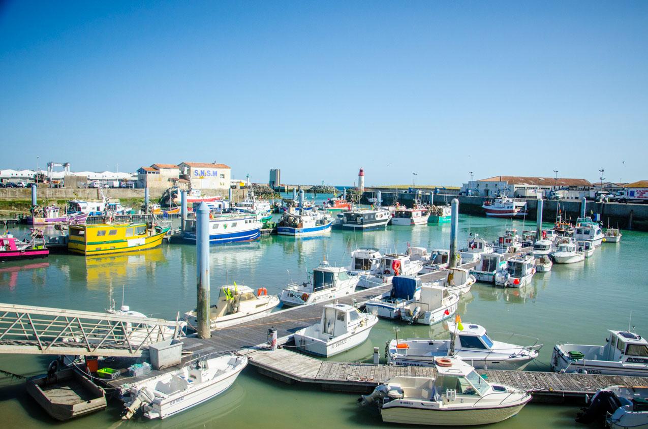 port-la-cotiniere